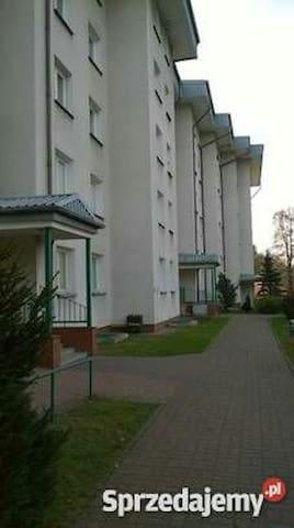 Kawalerka w spokojnej okolicy