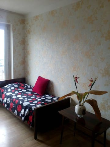 Cosy apartment in Tbilisi(close to Metro Tsereteli