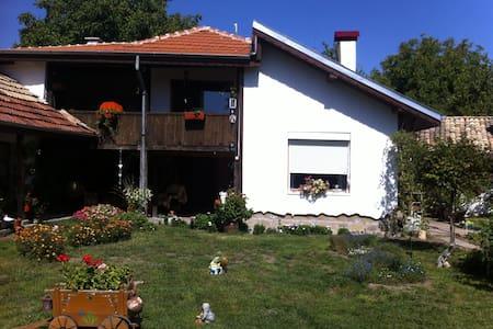 Селска къща с три спални - Ostrovche