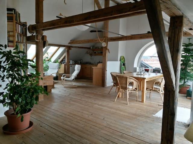 Jan Antonin's loft B