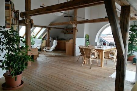Jan Antonin's loft B - Prague - Loft