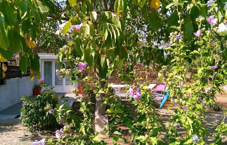 Gite de charme au coeur des vignes - Gonfaron - Huis