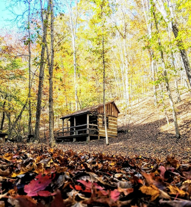 October 2017 ... Hike the beautiful ridges behind the Cabin.