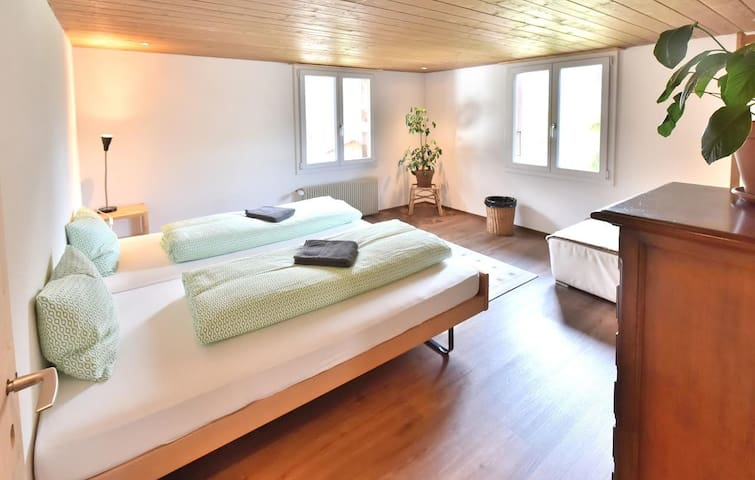 Spacious apartment in downtown Grindelwald