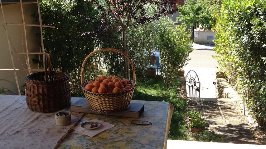 House in Tuscany - Culture, food and the sea