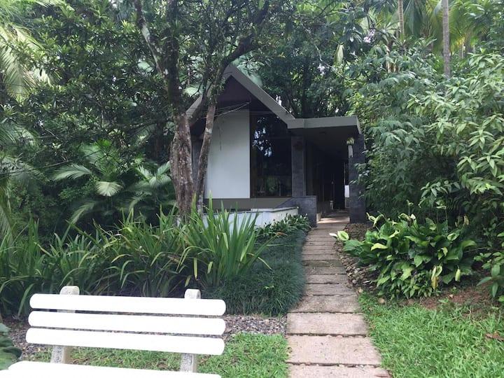 Casa junto à exuberante natureza e silêncio