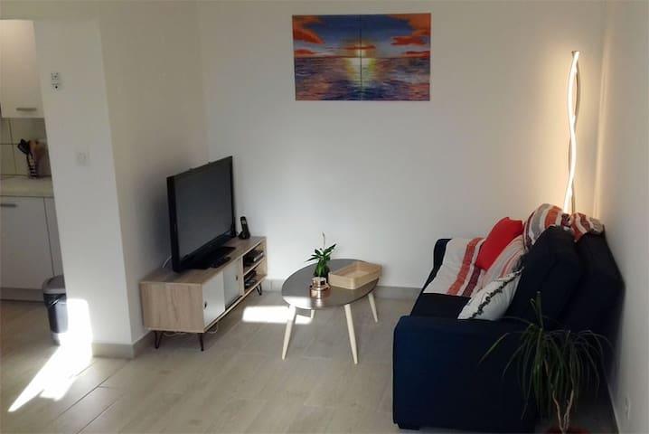 Situé au rez-de-chaussée: le séjour avec canapé (lit d'appoint 140 cm x 190 cm), TV écran plat, lecteur DVD, chaine hifi, box avec WIFI.