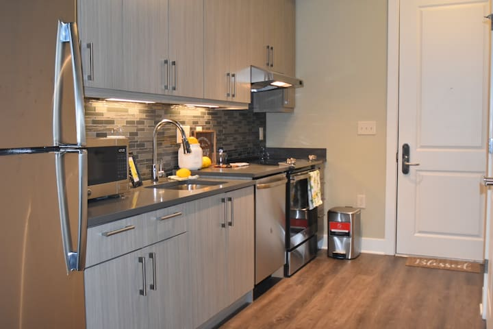 Cozy Midrise Luxury Apt. in the heart of Downtown