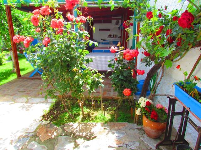 Garden, Breakfast and Resting Area