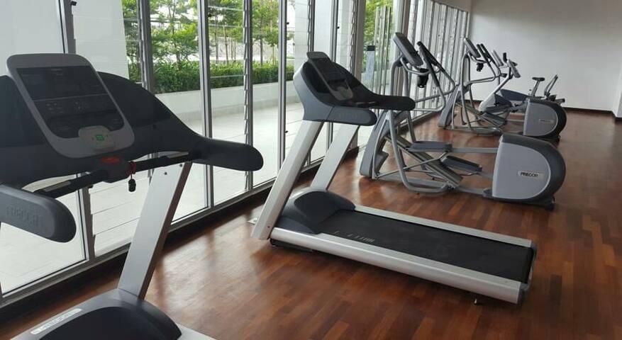 gym (level 13)