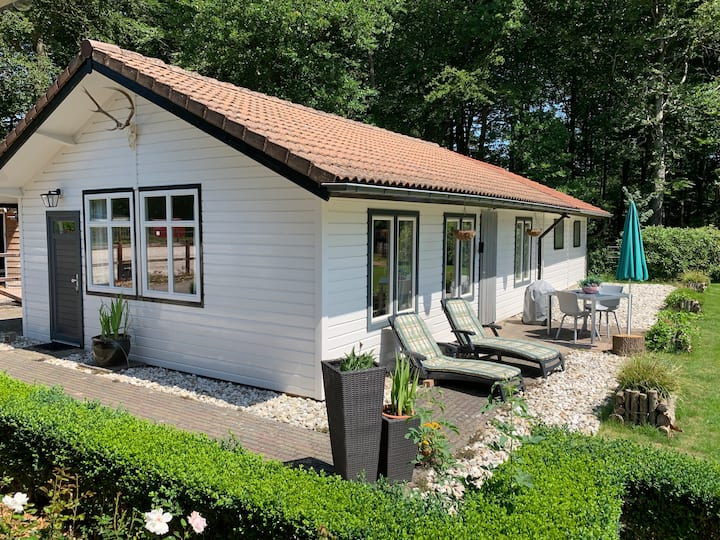 Guesthouse, B&B Staverden, Ermelo, Hei&Bosch