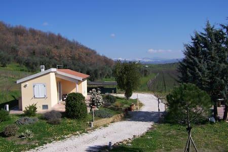 Casaletto in Maremma - Pomonte - Sommerhus/hytte