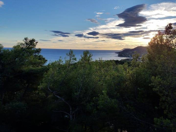 Ocean View Villa(Upper apartment)