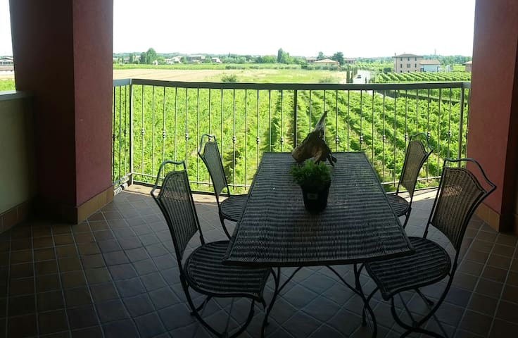 Amazing view on the vineyards, Sirmione, Lake - Sirmione - Apartment