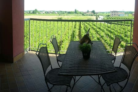 Amazing view on the vineyards, Sirmione, Lake - Apartment