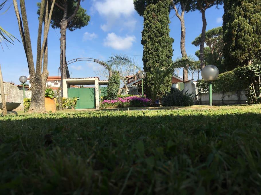 ampio giardino frontale