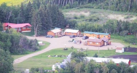 Big Grass Cabins