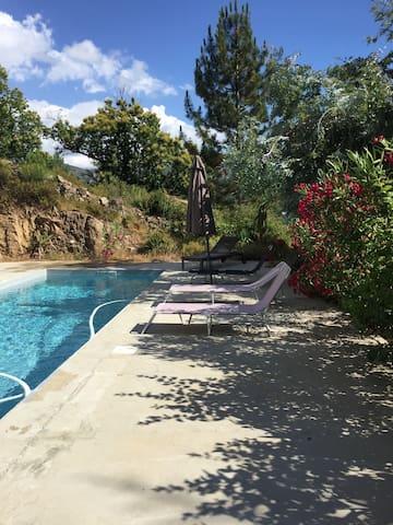 B&B with swimming pool