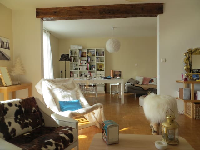 Nice bed room in a sunny 100m2 flat - Cugnaux - Pis