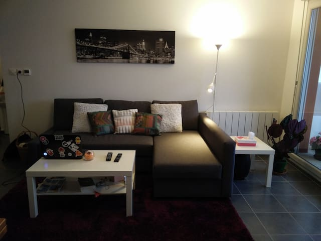 Quiet bedroom near GREAT STADIUM - Meyzieu - Daire
