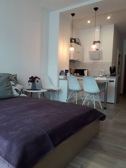 Apartament centrum Viola