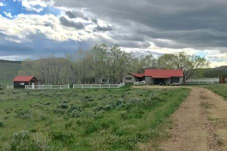 SERENDIPITY a Unique 83 acre mountain ranch