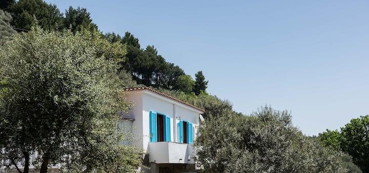 Villetta nerano - sea view among olive trees