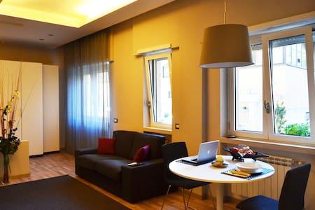 Lofti Roma - loft/apartment near the Vatican - Roma