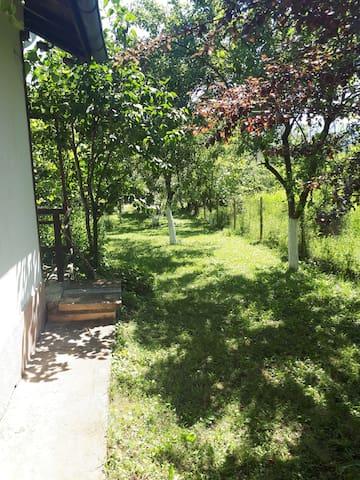 Villa Geshevi in Skravena
