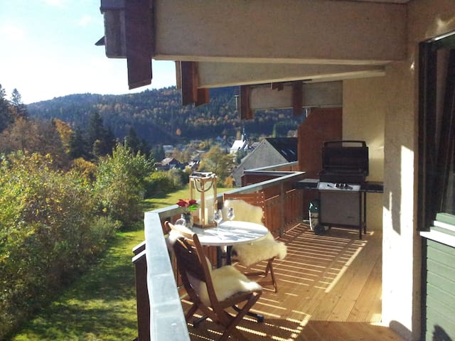 Black Forest Holiday Apartment (Renovated Oct2016) - Todtmoos - Lägenhet