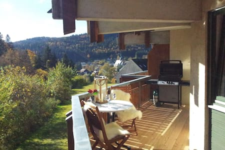 Black Forest Holiday Apartment (Renovated Oct2016) - Todtmoos - Appartement