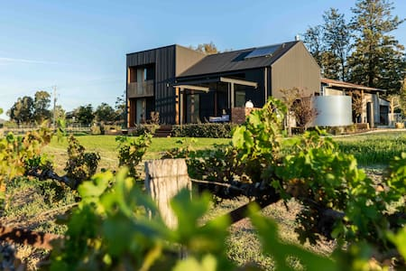 The Black Shed - Luxury Vineyard Escape Mudgee