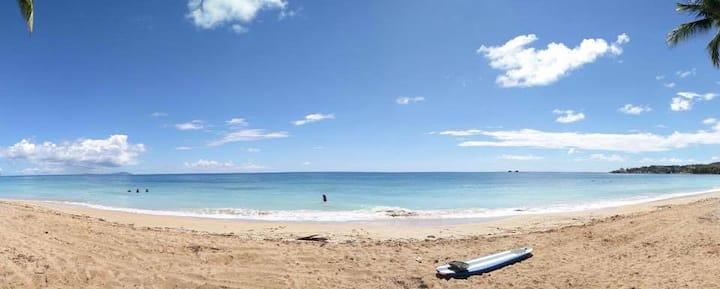 Blue Villa at Plamas Del Mar