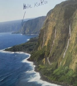 2 BD ocean cliff,fruit, epic views! - Honokaa - Cabin