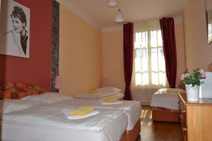 Apartment 604 Wenceslas square - Praha - Rumah