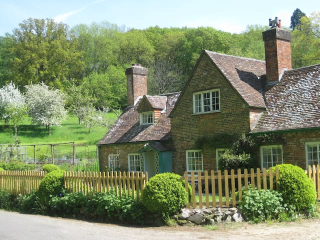 Jobs Mill Cottage - Wiltshire - Dům