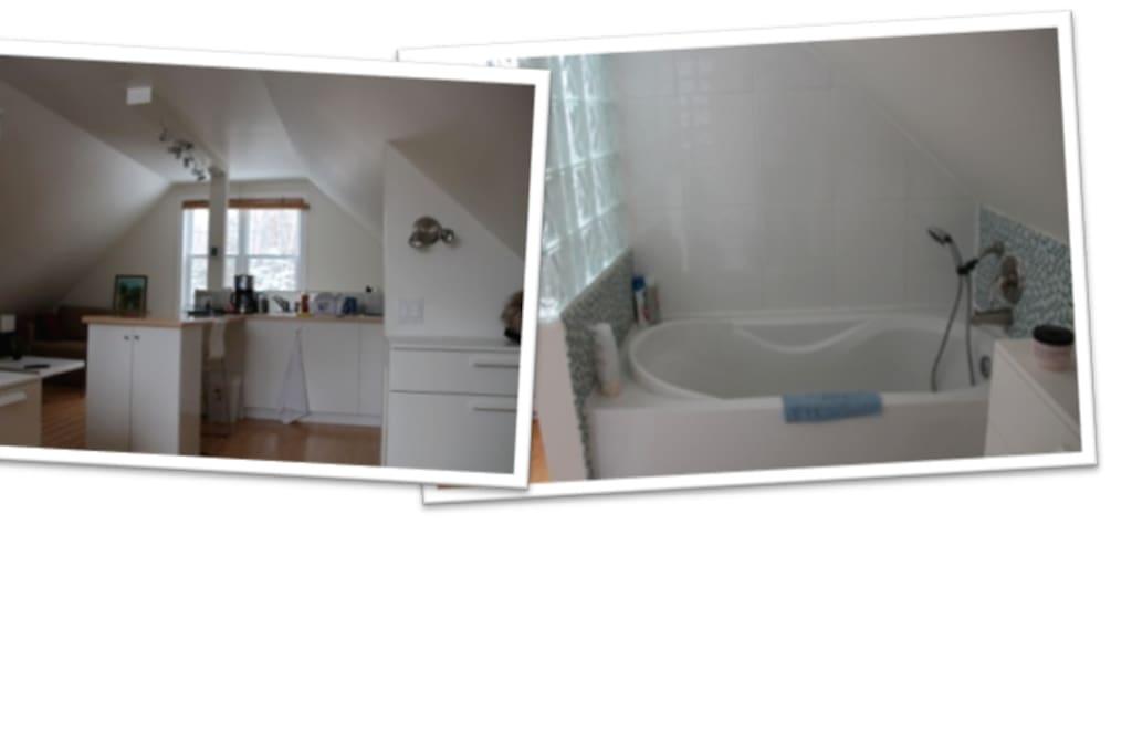Un aperçu de la cuisine avec la vue sur les bois et la baignoire de la salle de bain avec son mur de briques de verre!