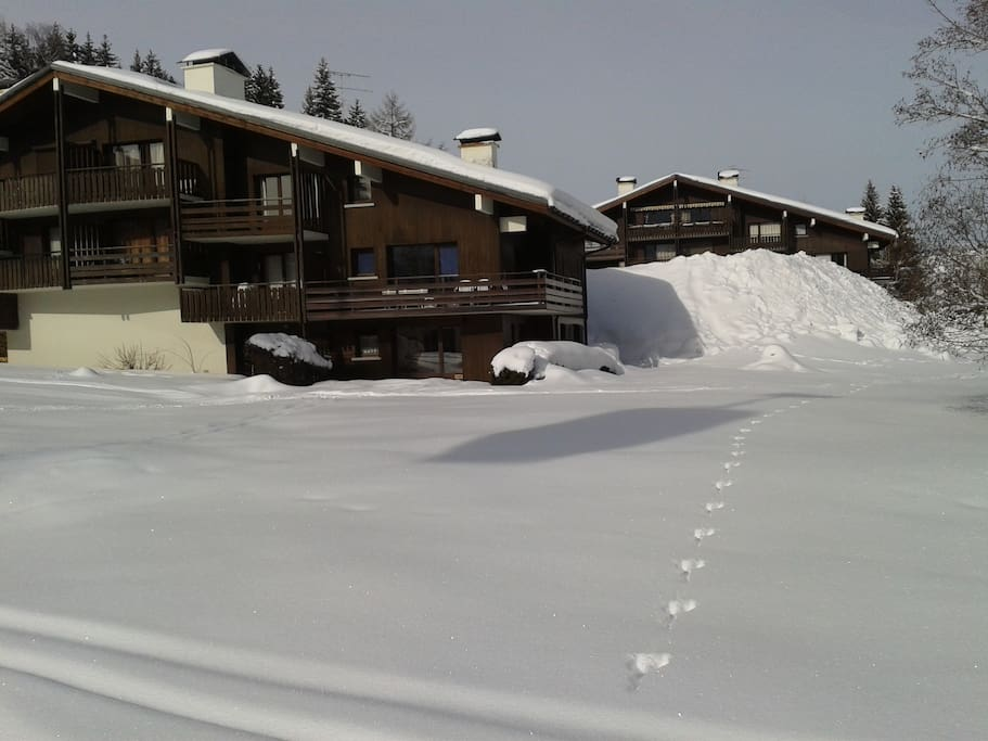 Ground floor apartment with direct access to the slopes !