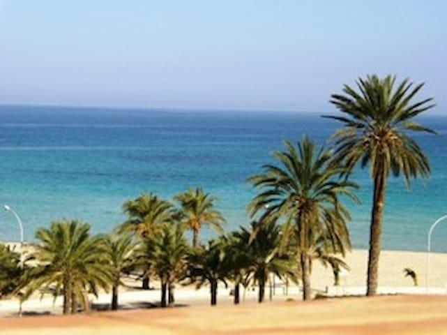 San Vito Lo Capo Mediterranea Domus