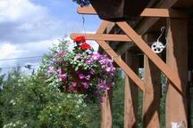 Flowers baskets on veranda