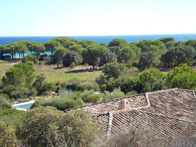 Villa Cataraccio : Mer et Piscine - ポルトヴェッキオ - 別荘