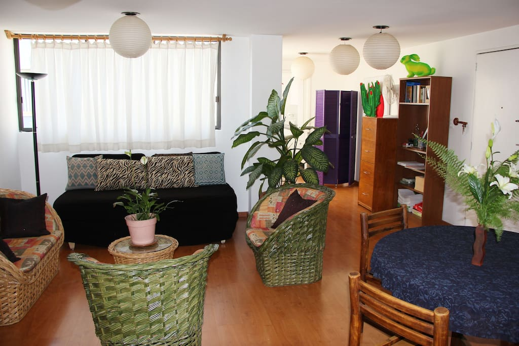 Living room with coah-extra bed