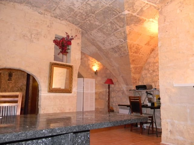 Troglodyte house in Provence - Fontvieille - Casa