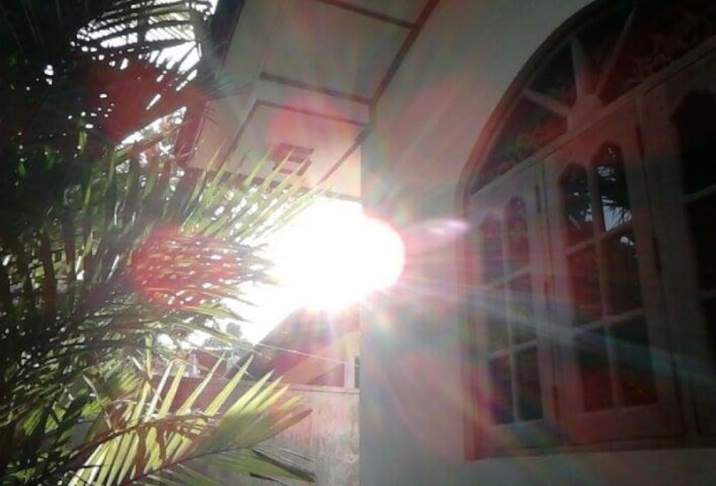 Left side of the house while sun is brightly shining