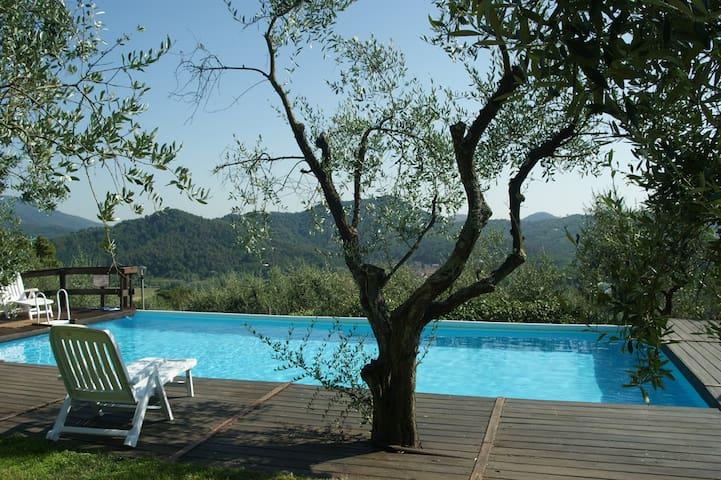 Villa immersa nel verde  - Lucca - Casa