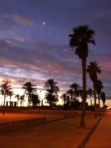 Sunrise in the beach. December 2013