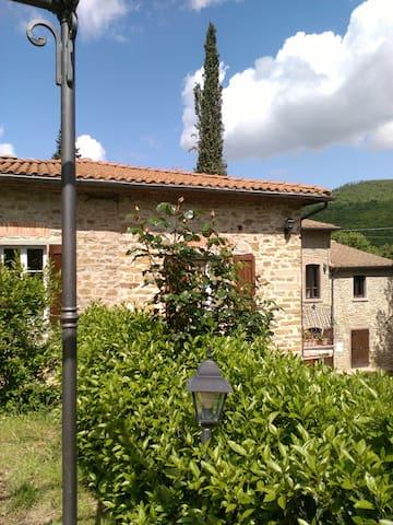 la casa nel bosco - Capolona - Haus