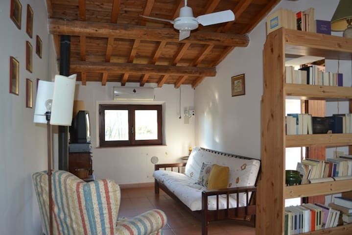 Little house with garden and pool - Mercatello - Casa