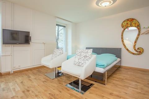 Grand Studio Manoir Midi Guestrooms