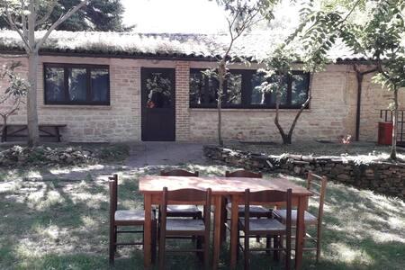 Casa Vacanza 3  Agriturismo Villa delle Cupa